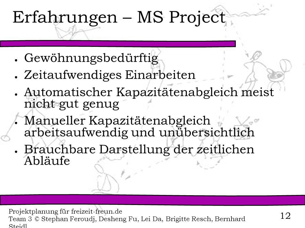 Erfahrungen – MS Project