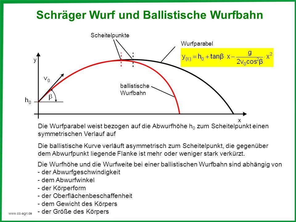 Charmant In Abhängigkeit Von äußeren Schrägen Galerie - Anatomie Von ...