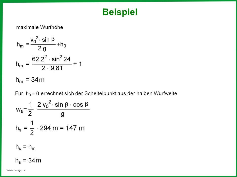Beispiel maximale Wurfhöhe
