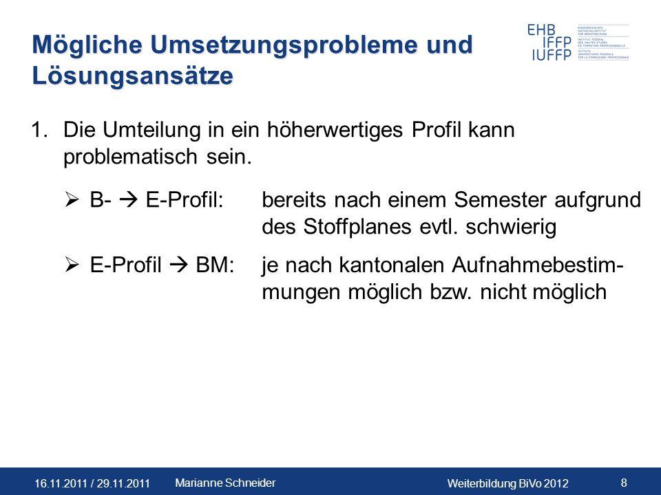 Mögliche Umsetzungsprobleme und Lösungsansätze