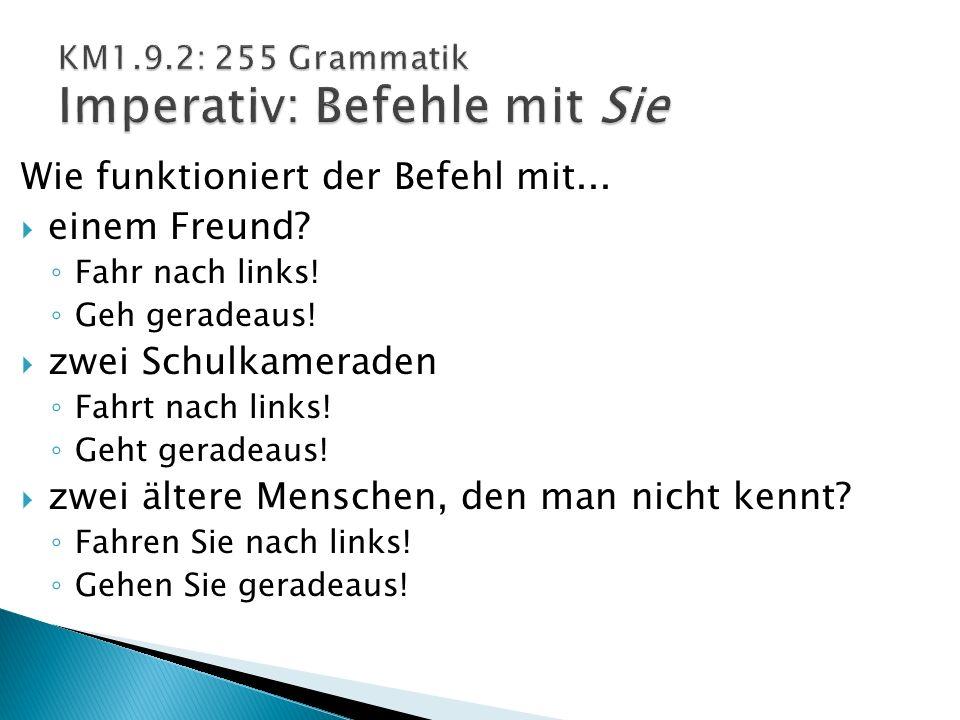 KM1.9.2: 255 Grammatik Imperativ: Befehle mit Sie
