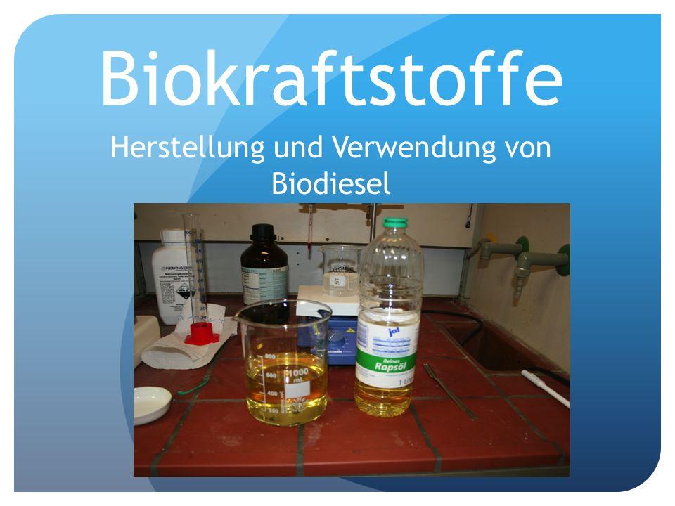 Herstellung und Verwendung von Biodiesel