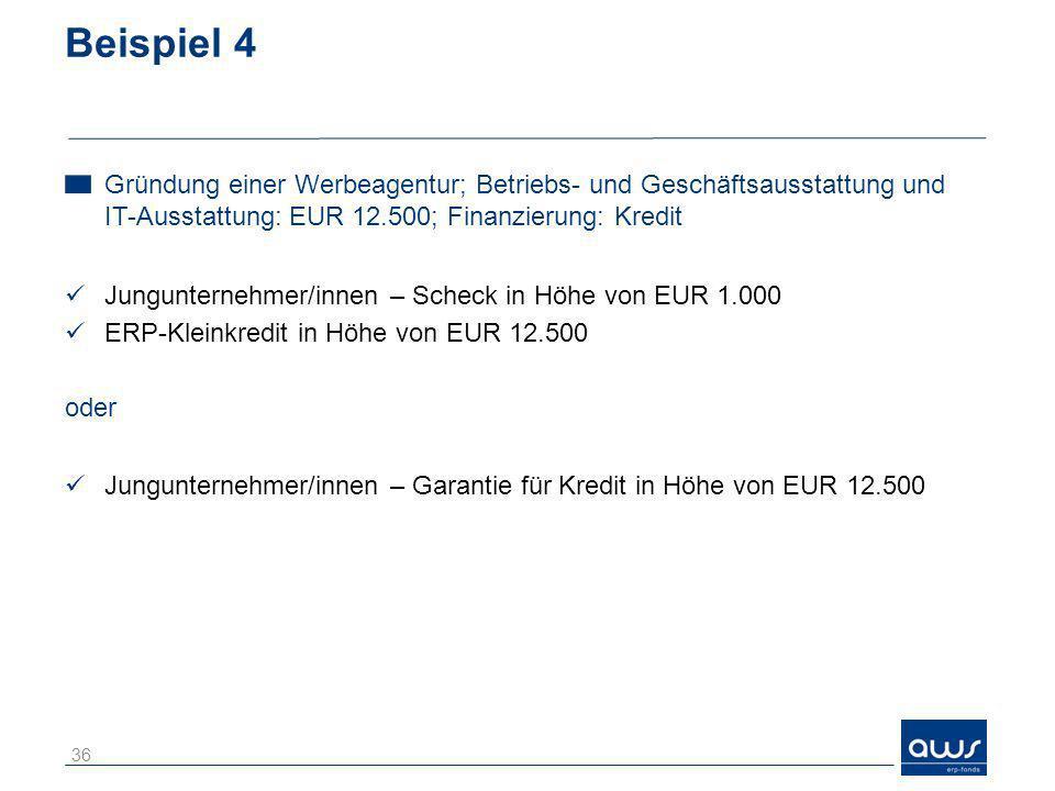 Beispiel 4 Gründung einer Werbeagentur; Betriebs- und Geschäftsausstattung und IT-Ausstattung: EUR 12.500; Finanzierung: Kredit.