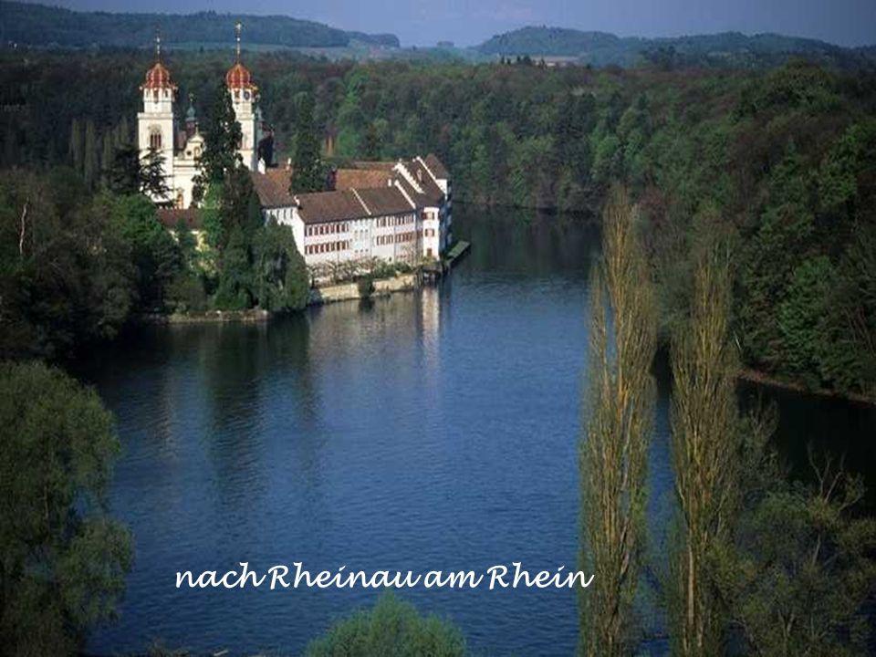 nach Rheinau am Rhein