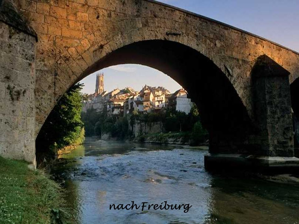 nach Freiburg