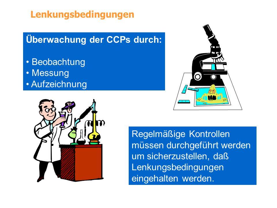Lenkungsbedingungen Überwachung der CCPs durch: Beobachtung. Messung. Aufzeichnung. Regelmäßige Kontrollen.