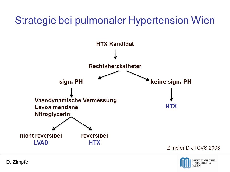 Strategie bei pulmonaler Hypertension Wien