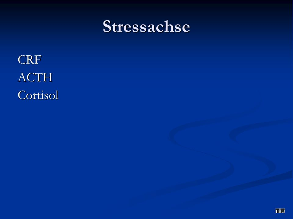 Stressachse CRF ACTH Cortisol