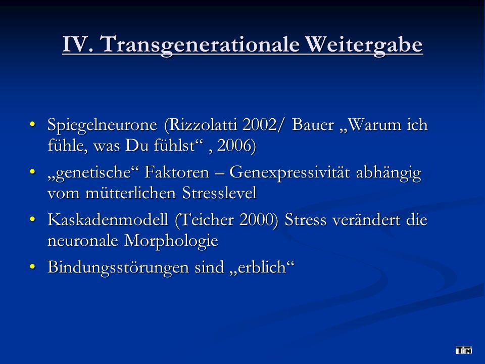 IV. Transgenerationale Weitergabe