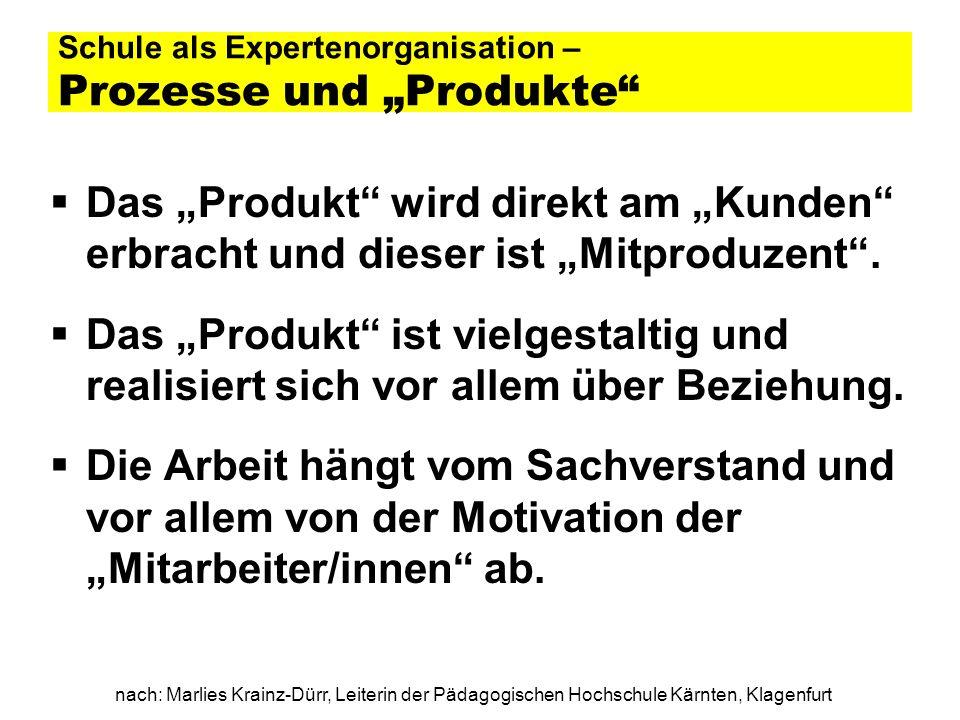 """Schule als Expertenorganisation – Prozesse und """"Produkte"""