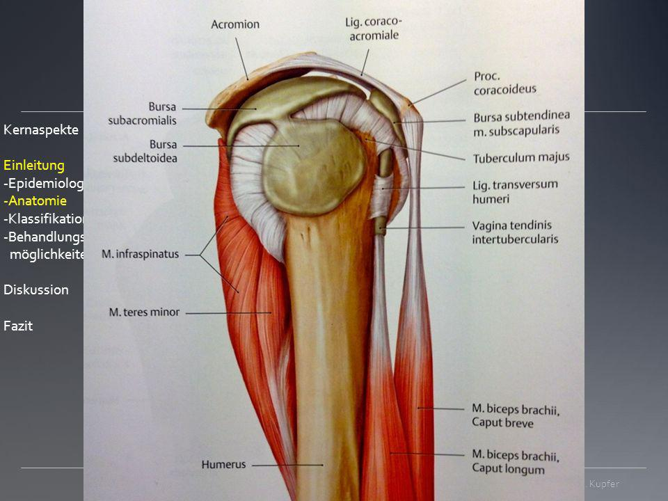 Orthopädisch/ Unfallchirurgischer Abend