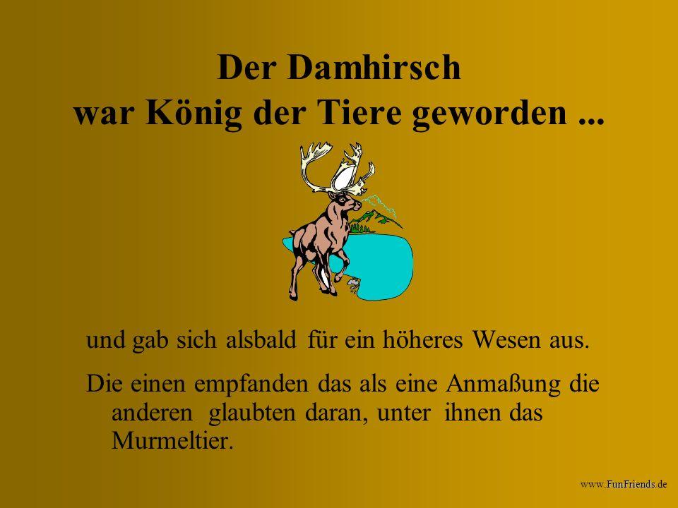 Der Damhirsch war König der Tiere geworden ...
