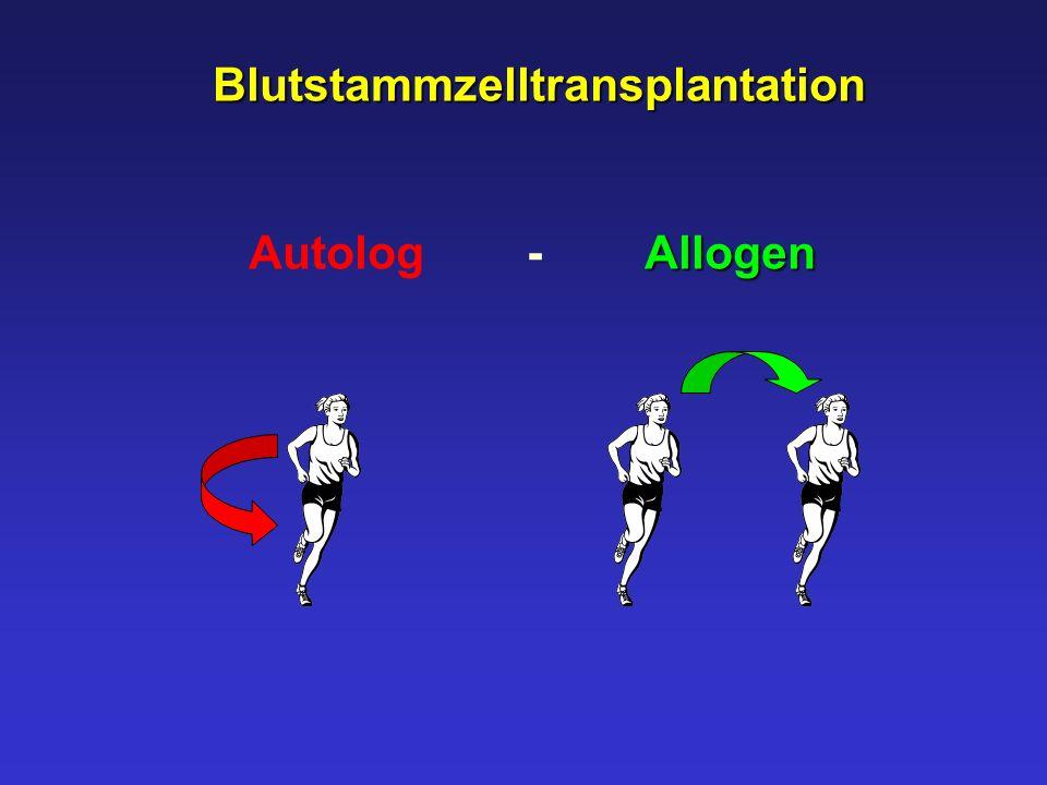 Blutstammzelltransplantation
