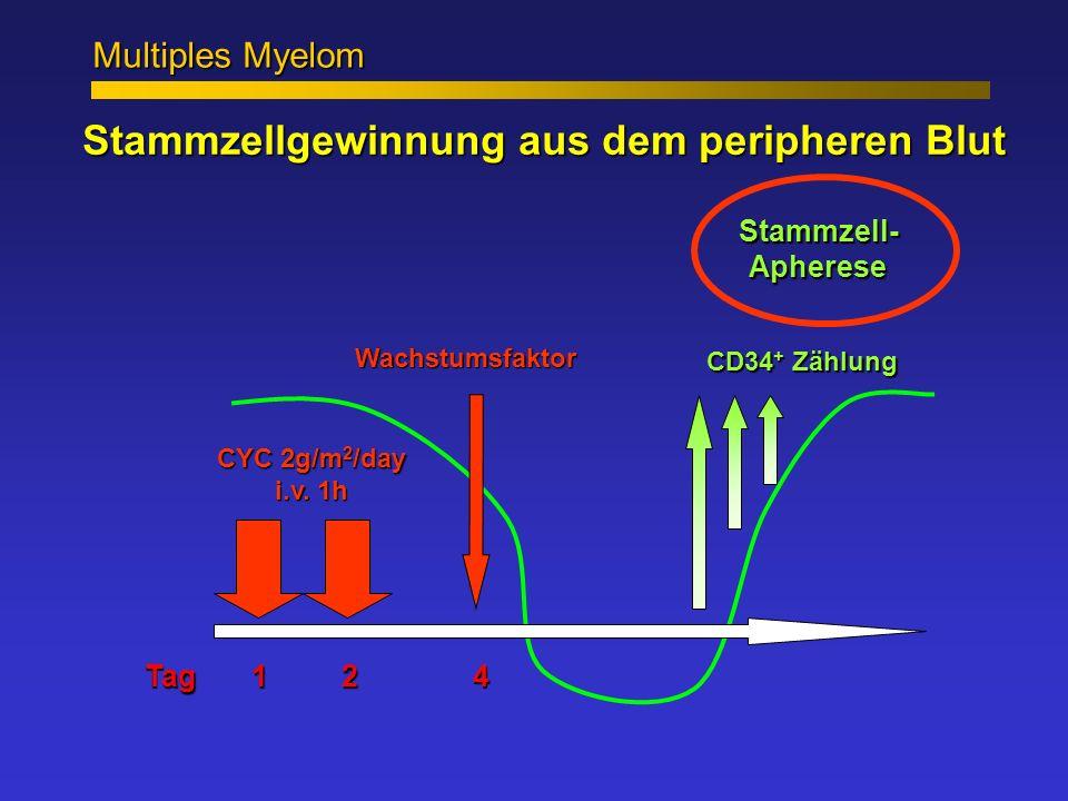 Stammzellgewinnung aus dem peripheren Blut