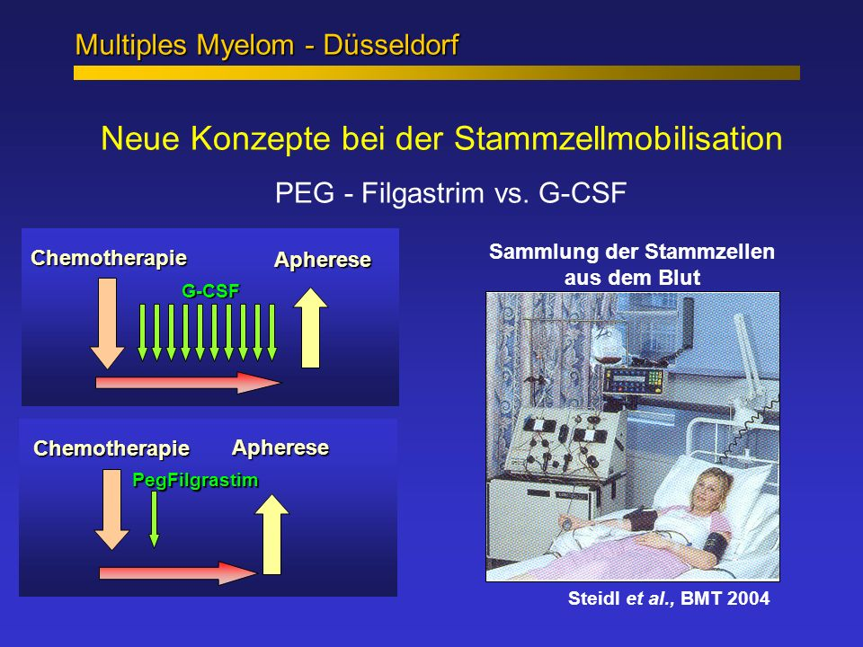 Sammlung der Stammzellen