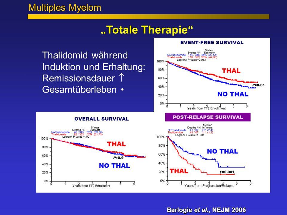 """""""Totale Therapie mit und ohne Thalidomid"""