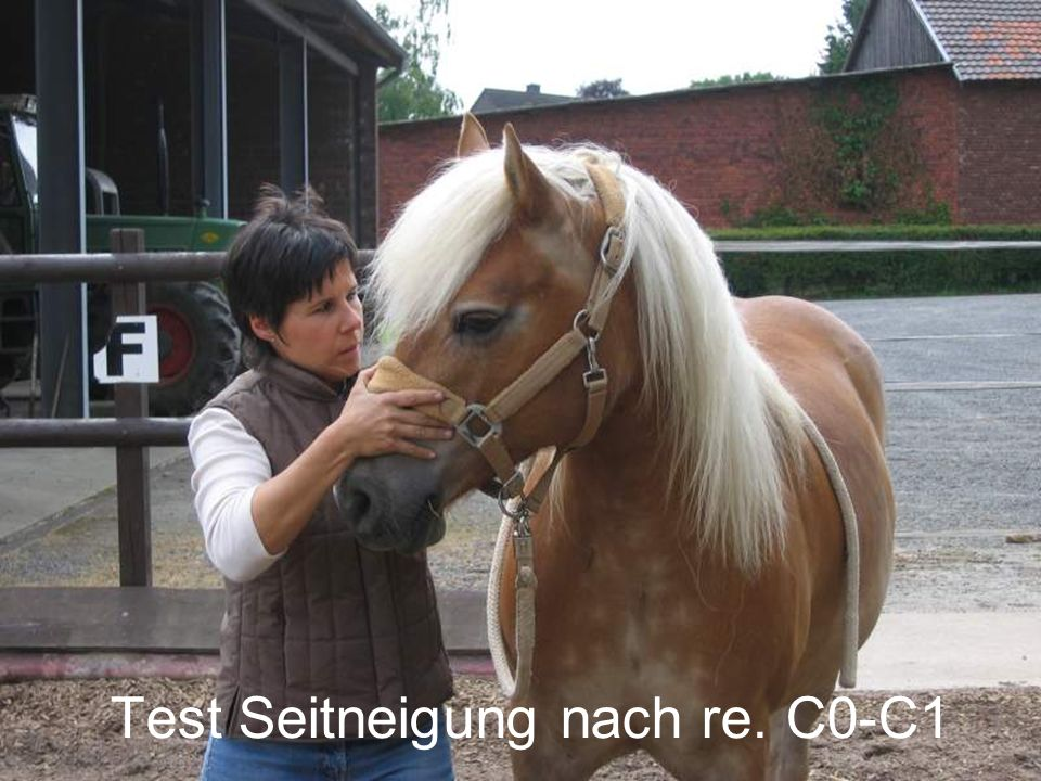 Test Seitneigung nach re. C0-C1