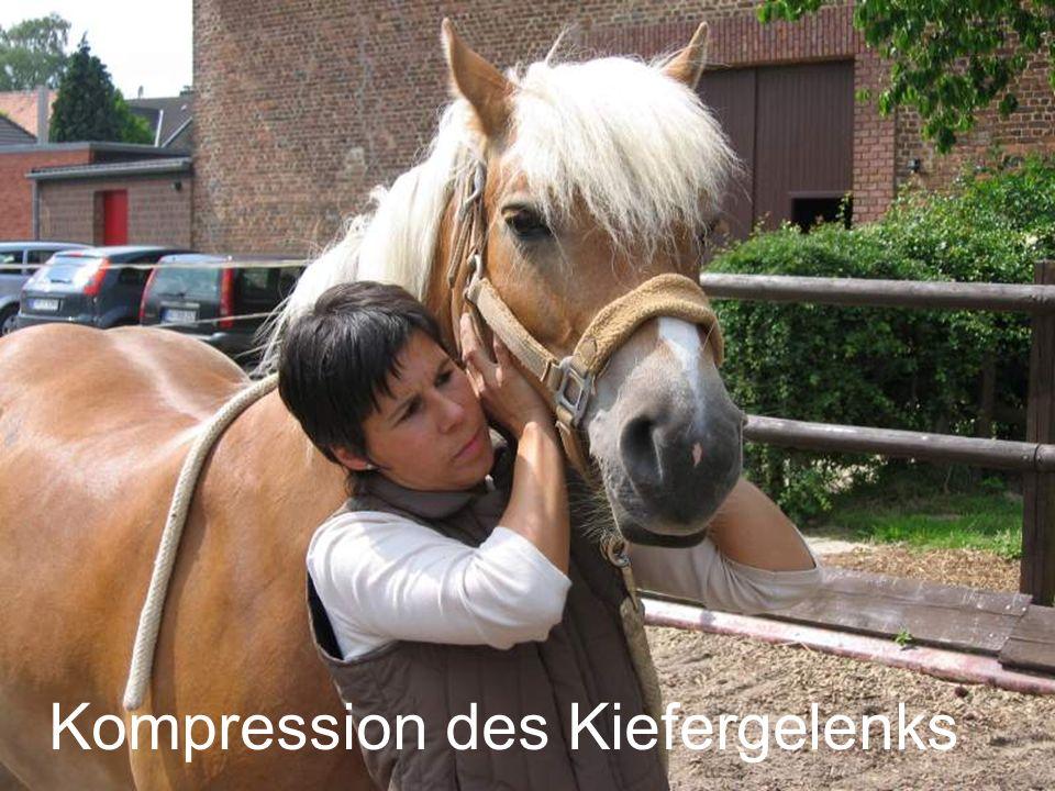 Kompression des Kiefergelenks