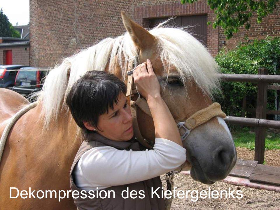 Dekompression des Kiefergelenks
