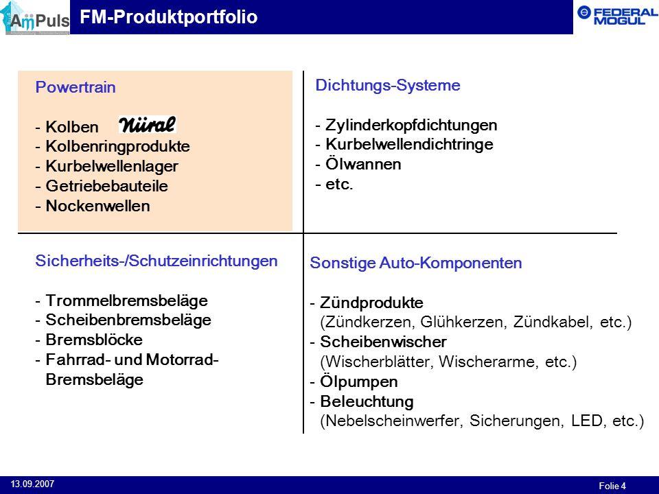 FM-Produktportfolio Powertrain Dichtungs-Systeme Kolben