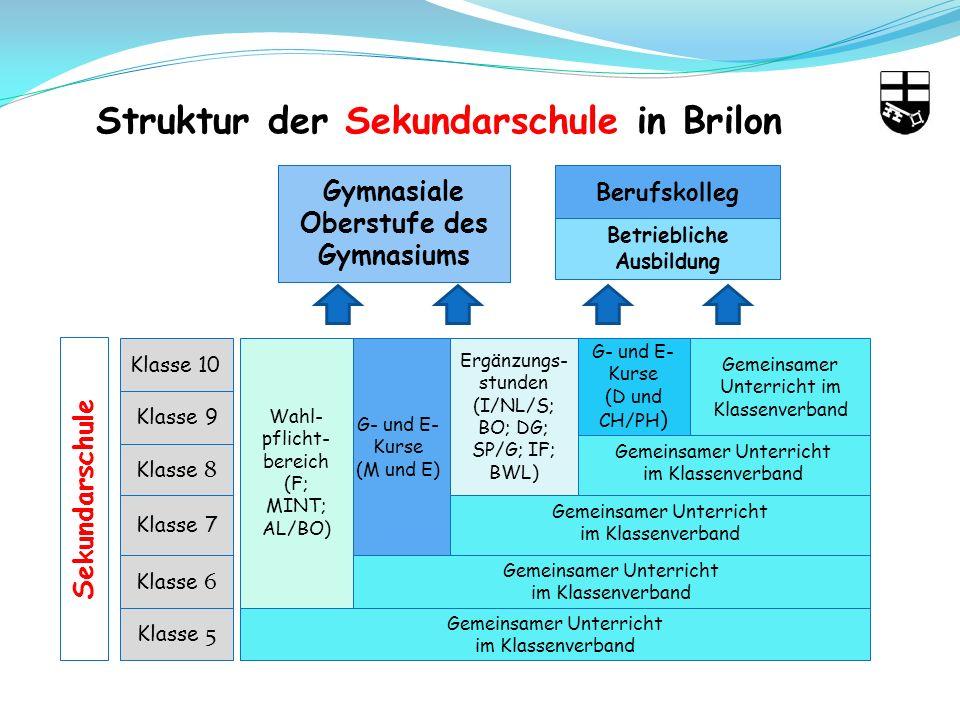 Struktur der Sekundarschule in Brilon