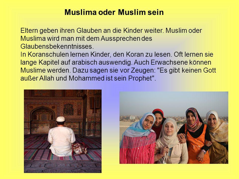 Muslima oder Muslim sein