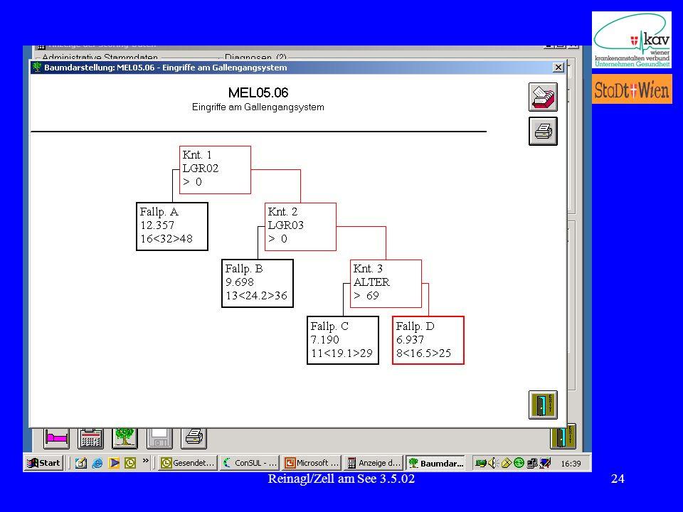 Reinagl/Zell am See 3.5.02