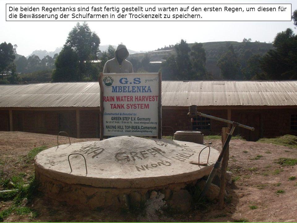 Die beiden Regentanks sind fast fertig gestellt und warten auf den ersten Regen, um diesen für die Bewässerung der Schulfarmen in der Trockenzeit zu speichern.