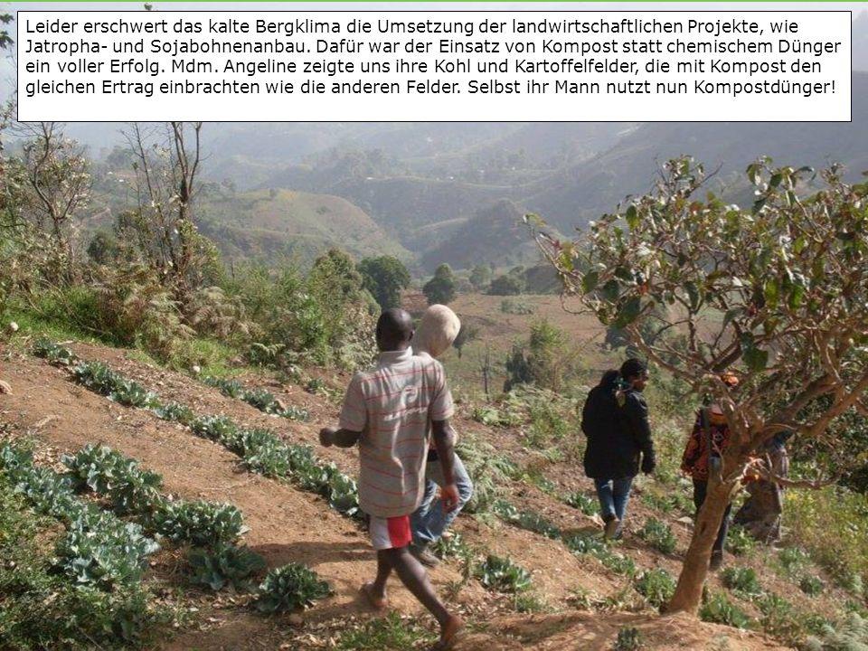 Leider erschwert das kalte Bergklima die Umsetzung der landwirtschaftlichen Projekte, wie Jatropha- und Sojabohnenanbau.