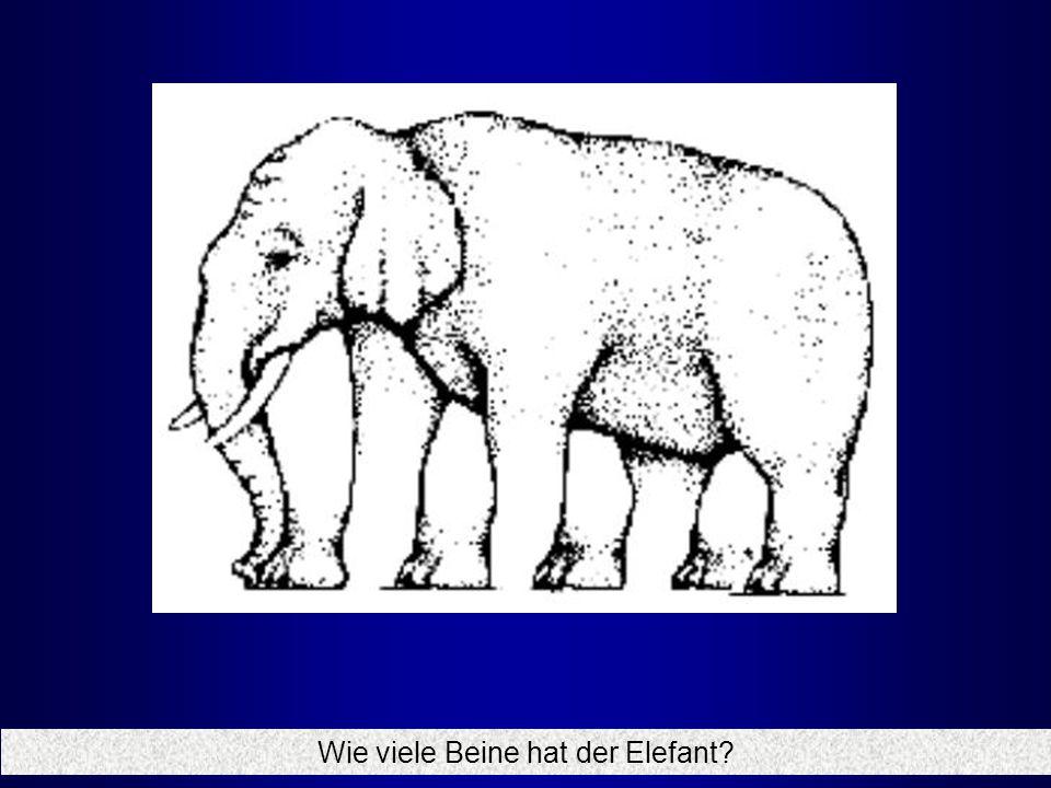 Wie viele Beine hat der Elefant
