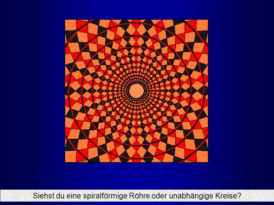 Siehst du eine spiralförmige Röhre oder unabhängige Kreise