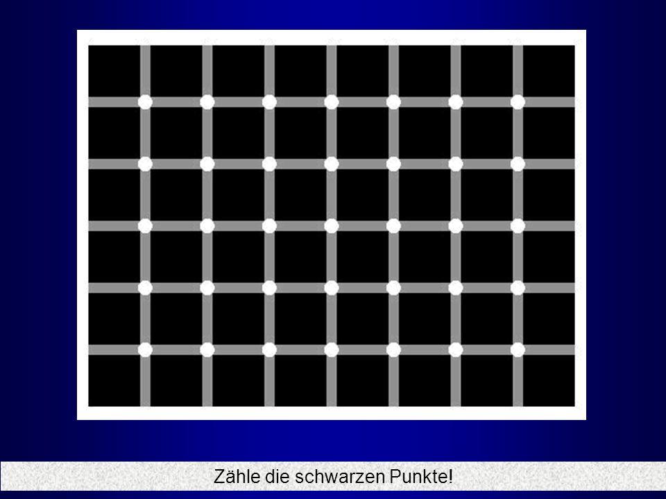 Zähle die schwarzen Punkte!