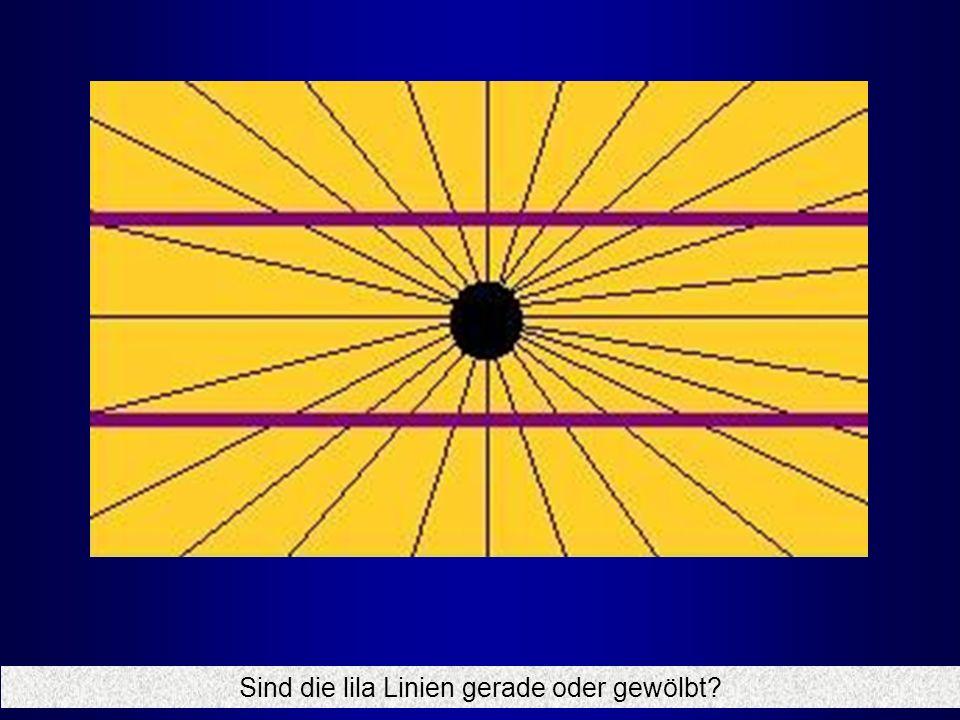 Sind die lila Linien gerade oder gewölbt