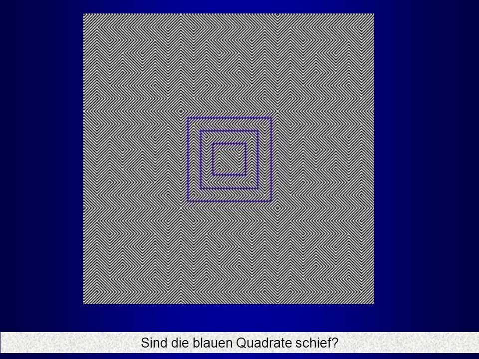 Sind die blauen Quadrate schief