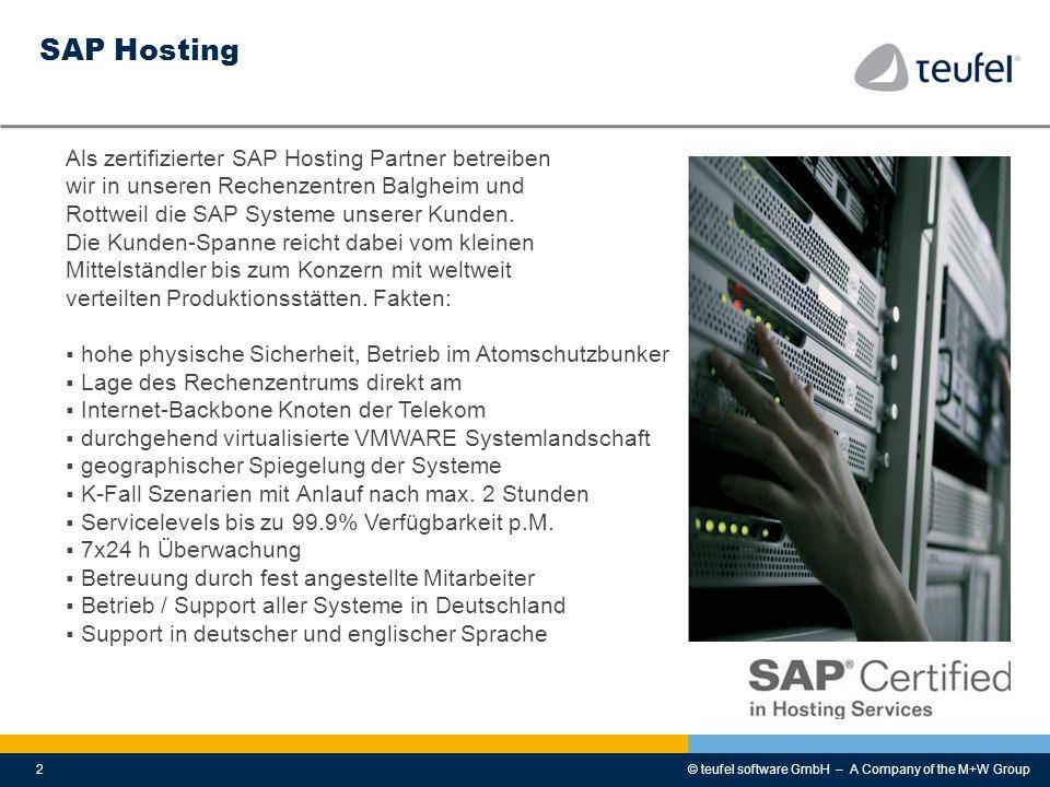 SAP Hosting Als zertifizierter SAP Hosting Partner betreiben