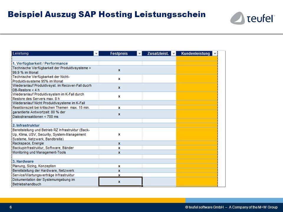 Beispiel Auszug SAP Hosting Leistungsschein