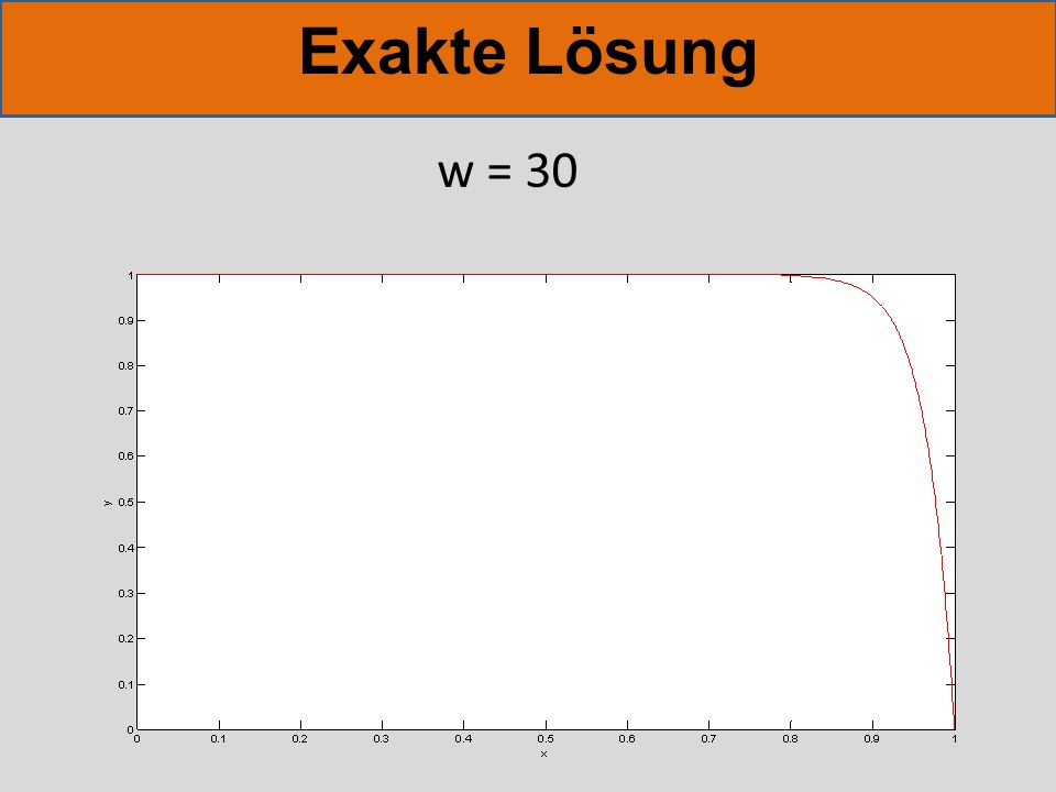Exakte Lösung w = 30