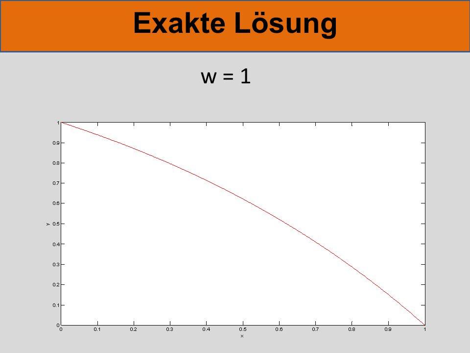 Exakte Lösung w = 1