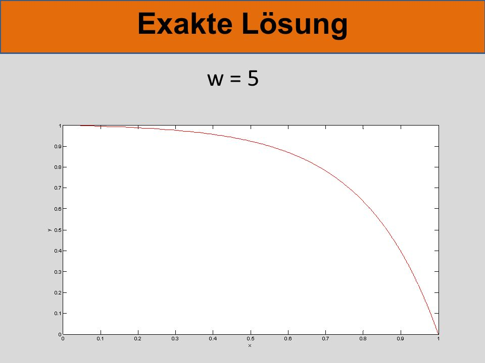 Exakte Lösung w = 5