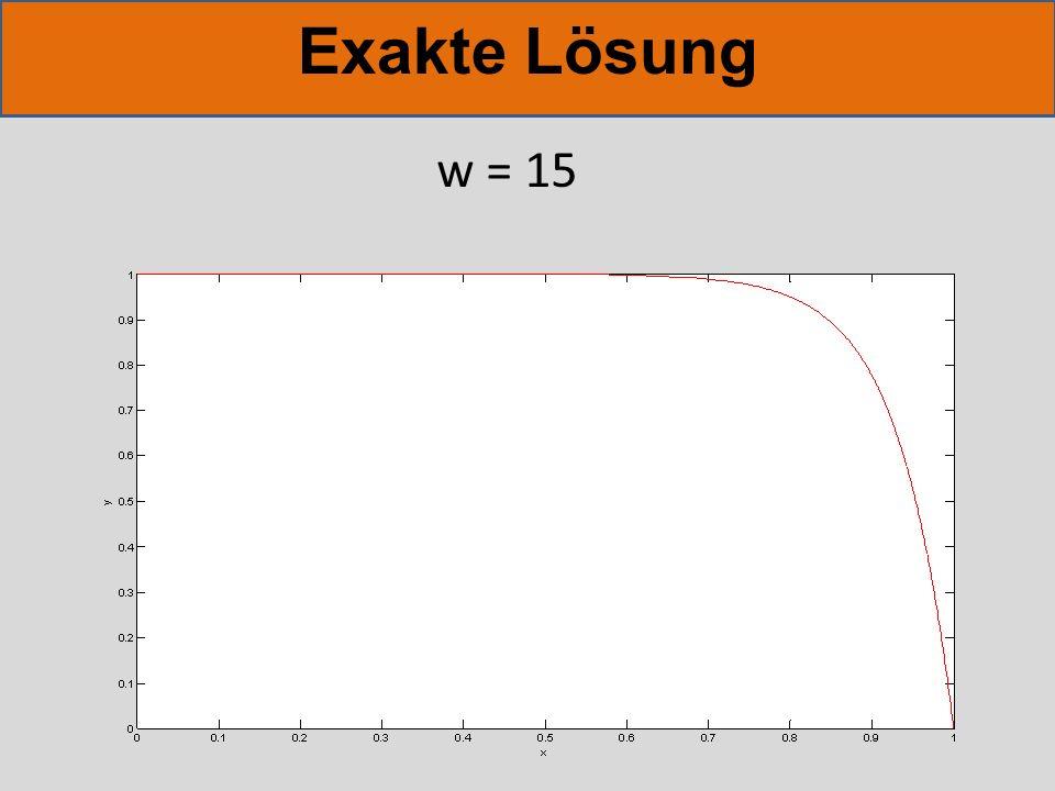 Exakte Lösung w = 15