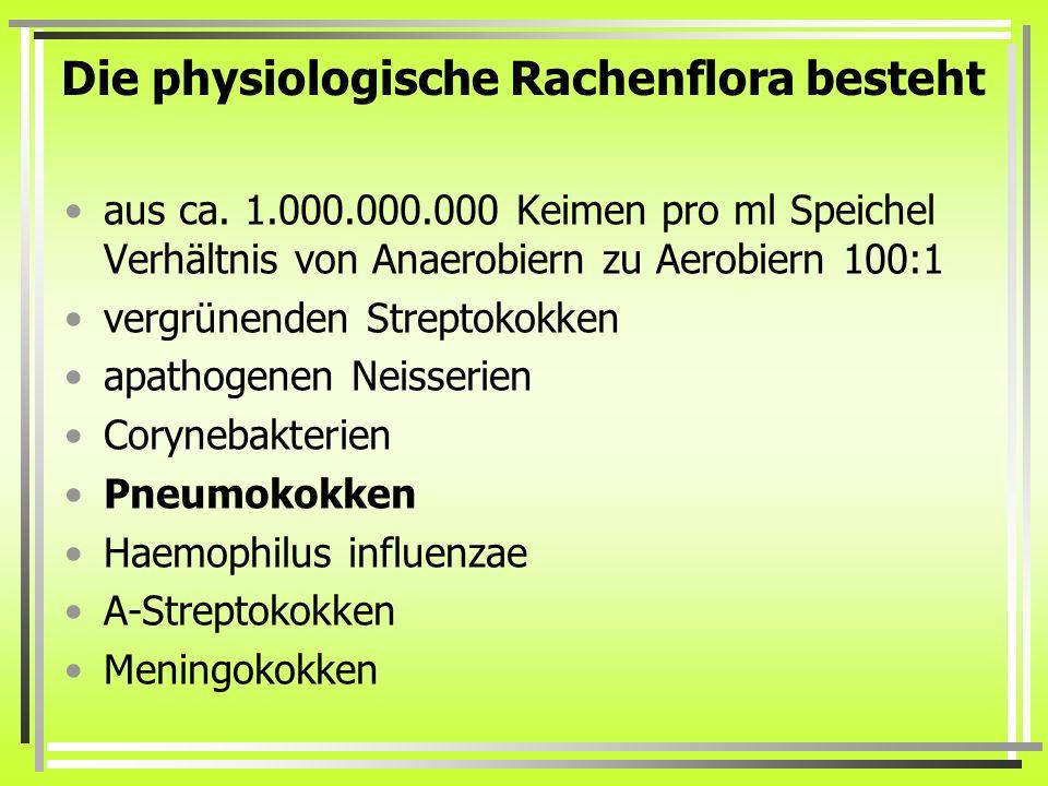 Die physiologische Rachenflora besteht