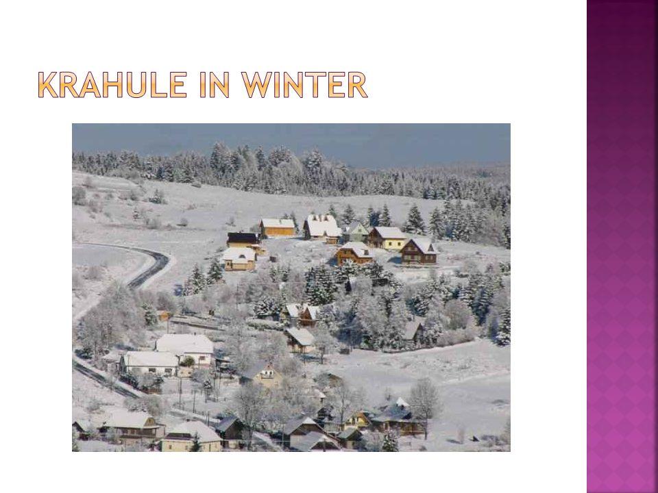 Krahule in winter