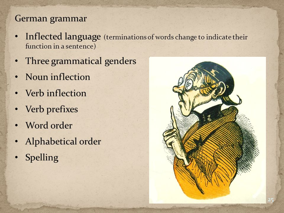 German grammar Inflected language (terminations of words change to indicate their function in a sentence)