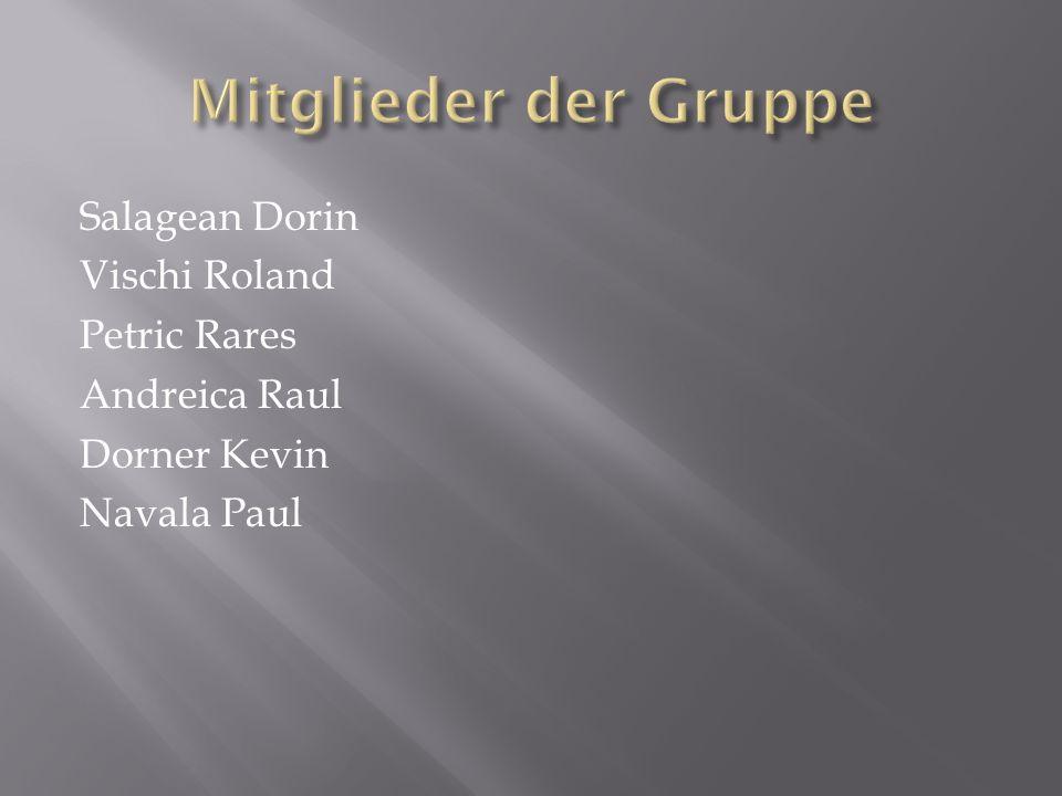 Mitglieder der Gruppe Salagean Dorin Vischi Roland Petric Rares Andreica Raul Dorner Kevin Navala Paul