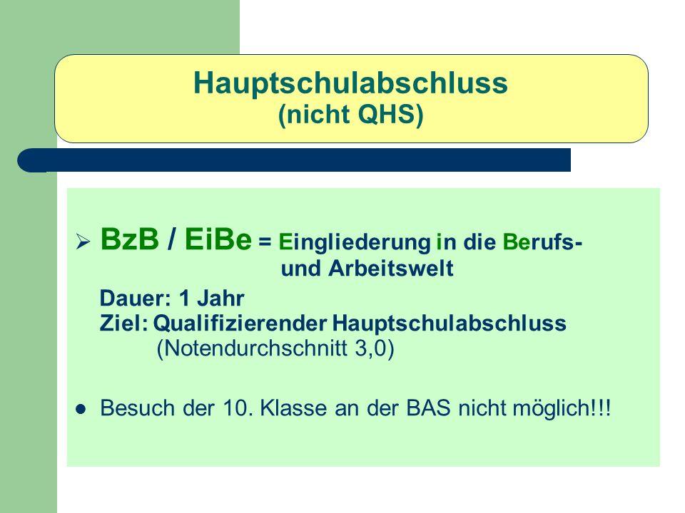 Hauptschulabschluss (nicht QHS)