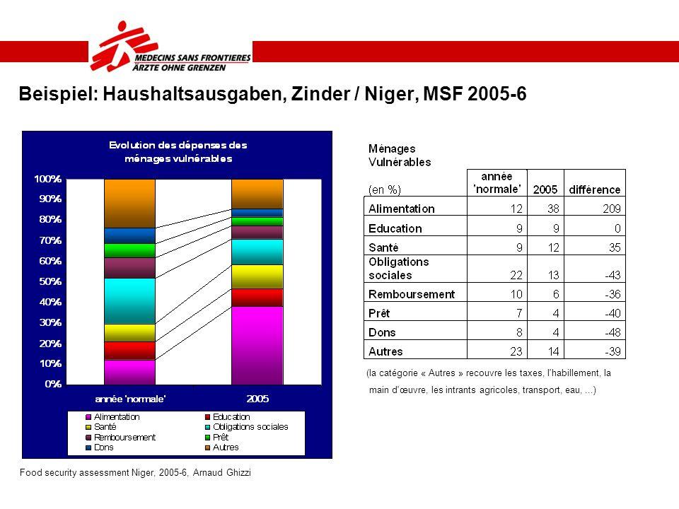 Beispiel: Haushaltsausgaben, Zinder / Niger, MSF 2005-6