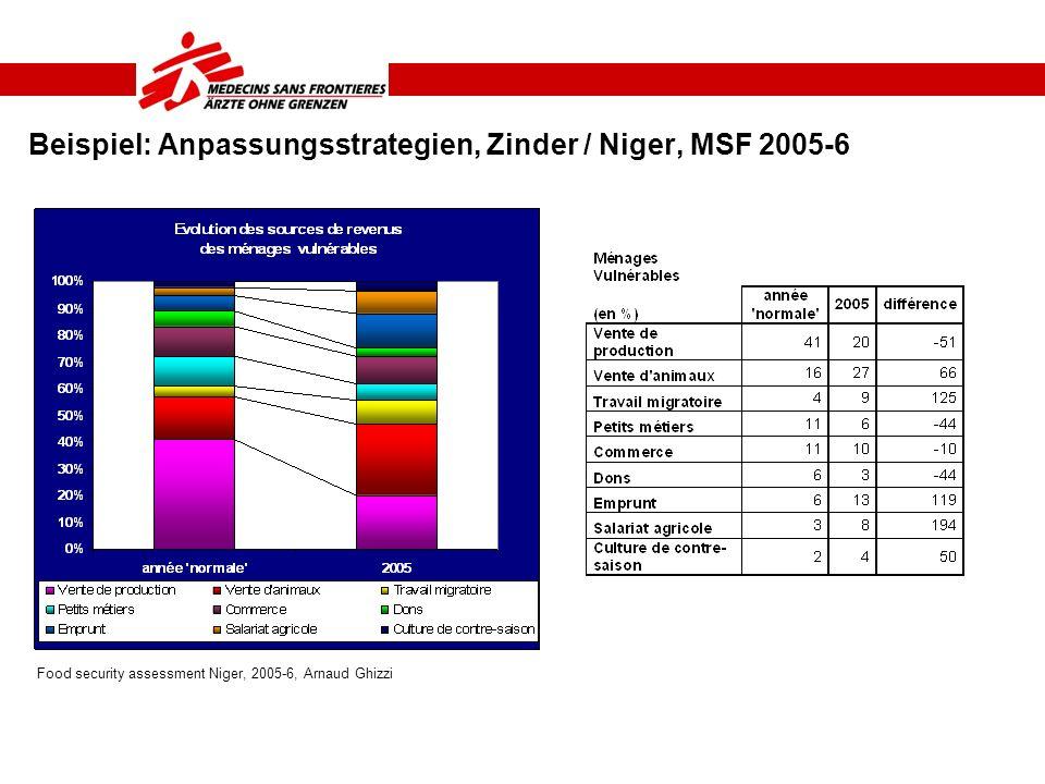 Beispiel: Anpassungsstrategien, Zinder / Niger, MSF 2005-6