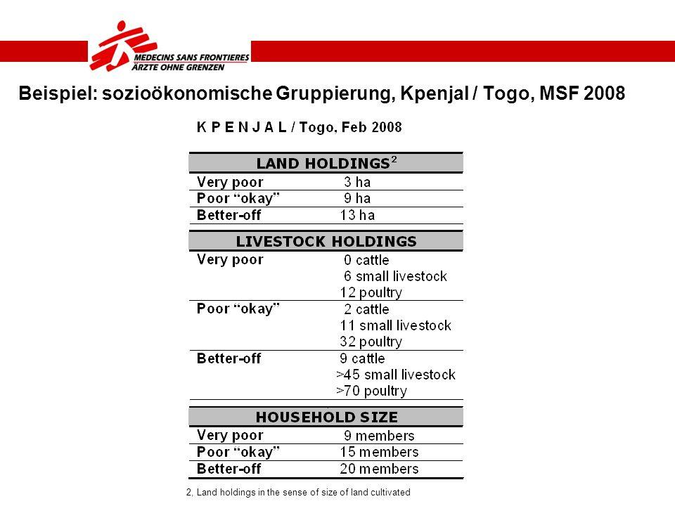 Beispiel: sozioökonomische Gruppierung, Kpenjal / Togo, MSF 2008