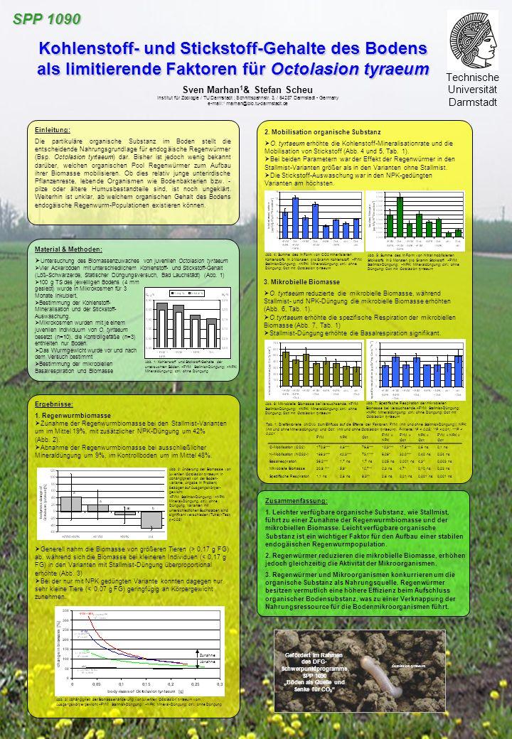 SPP 1090 Kohlenstoff- und Stickstoff-Gehalte des Bodens als limitierende Faktoren für Octolasion tyraeum.