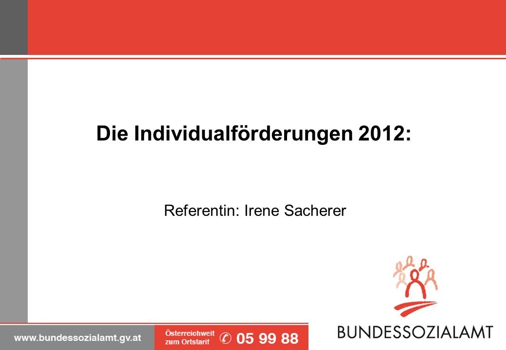 Die Individualförderungen 2012: